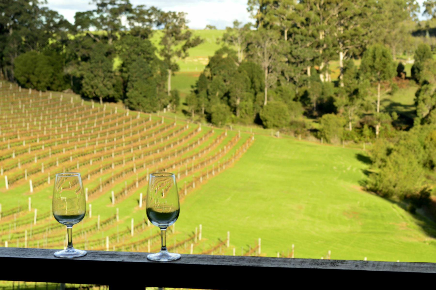 Pemberton Wine Region Southern Forests Western Australia