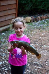 Rainbow Trout Fishing at Perth Farm Stay
