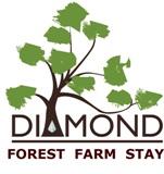 karri forest, farmstay, perth farmstay, pet friendly