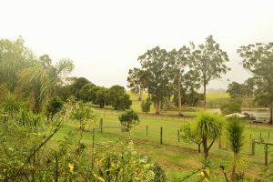 Farm Stay Accommodation Pemberton Western Australia